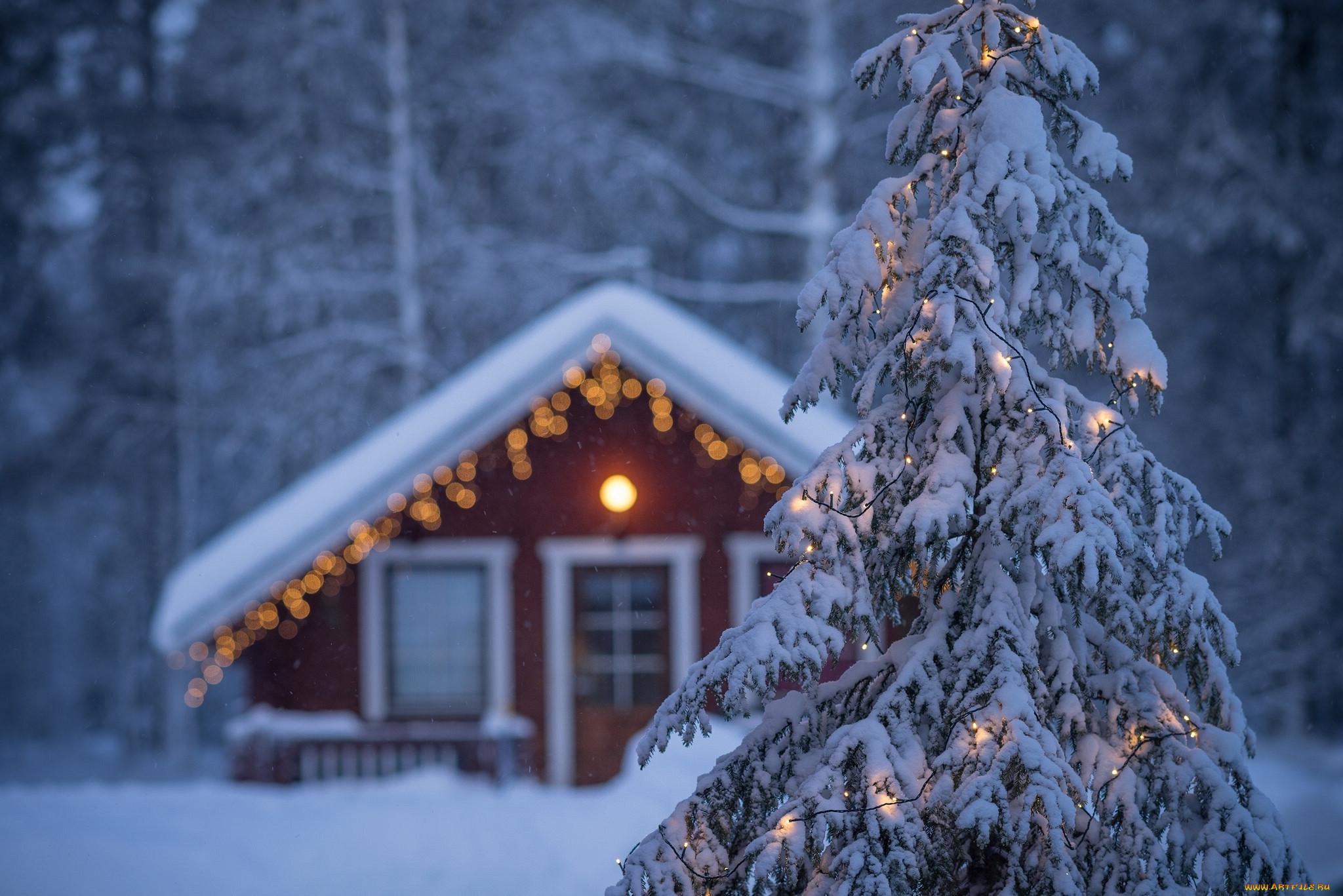 Красивая картинка домик и елки со снегом